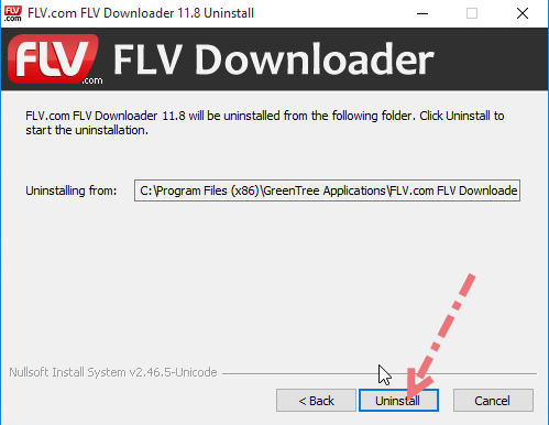 Remove FLV Player in Windows.